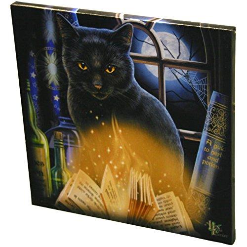 Bewitched - Wall art, stampa su canvas su cornice in legno, dimensioni 28 cm, soggetto: gatto nero con libri magici per incantesimo, design di Lisa Parker