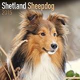 Shetland Sheepdog Calendar - Breed Specific Shetland Sheepdog Calendar - 2015 Wall calendars - Dog Calendars - Monthly Wall Calendar by Avonside