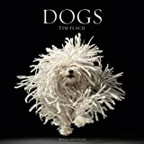 Dogs 2012 Wall Calendar