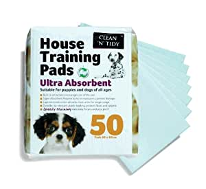 Clean-n-Tidy House Training Pads, Pack of 50