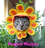 """Late Bloomer flower hat for dogs and cats (Small (fits pets with 8-12"""" collar size))"""