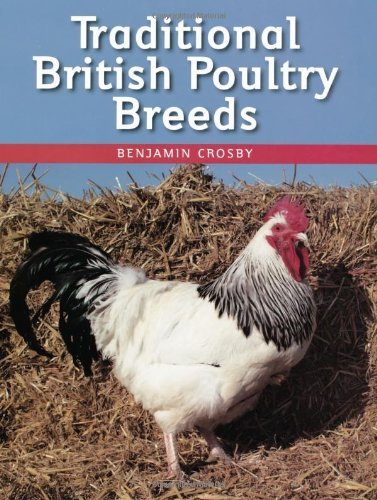 Traditional British Poultry Breeds