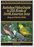 Audubon's VideoGuide to Birds of North America DVD II Song and Garden Birds