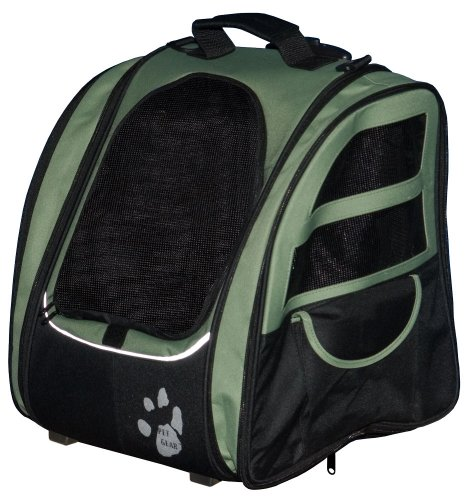 Cat Carriers For Large Cats Xpressionportal