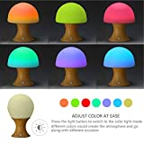 Mocent® Colorful Silicone Timer Light Ball and Mushroom Variable Appearance Night Light,Rechargeable Color Changing Lamp,Table/Desk Lamp (Yellow)