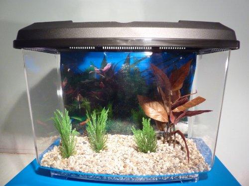 Starter Aquarium Small Fish Tank Complete With Filter,Gravel & Decor ...