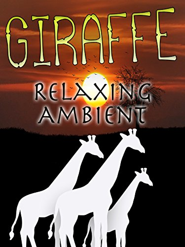 Giraffe Relaxing Ambient
