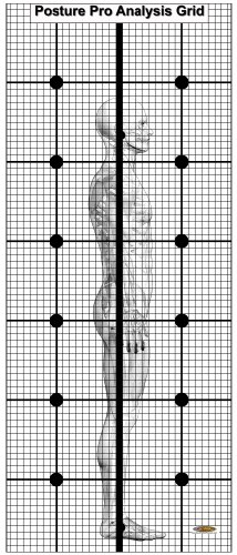 Posture-Grid-for-Wall-with-Normal-Lateral-Graphic-New-Sale-Price