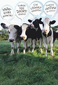 """Thank You Card """"Moo-chas Gracias, Thank You Dairy Much, I'm Undderly Grateful"""""""