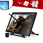 Ugee 19 Graphics Drawing Pen Tablet Monitor with Screen Protector and Pergear Clean Kit