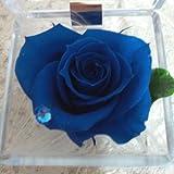 青い薔薇のプリザーブドフラワーギフトボックス スワロフスキークリスタル宝石箱アレンジ C ブルーローズ(サファイヤ) 9月の誕生石 白いギフト箱にリボンラッピング 手提げ袋付 ミニアレンジ