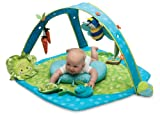 Boppy EntertainMe Play Gym, Garden Patch
