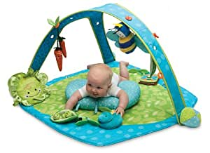 Boppy EntertainMe Play Gym, Garden Patch (Discontinued by Manufacturer)