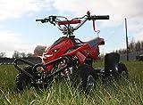 50cc Street Assassin Mini Off-Road Petrol Quad Bike - Red from Very Bazaar (tm)