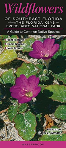 Wildflowers of Southeast Florida including the Florida Keys & Everglades National Park: A Guide to Common Native Species (Quick Reference Guides)