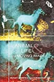 img - for Animal Life and the Moving Image book / textbook / text book