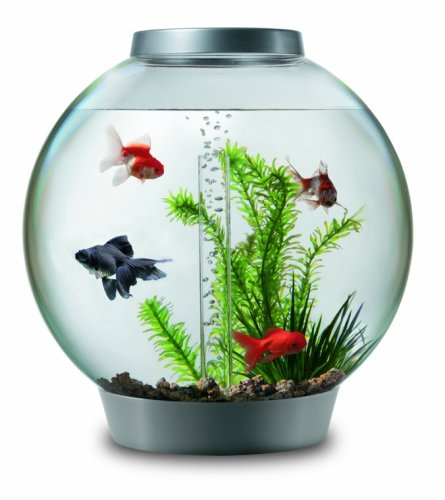 Biorb 30 Tropical Aquarium with Halogen Light Silver