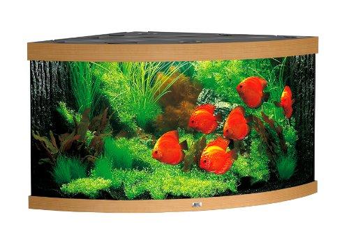 Juwel Aquarium 15550 Trigon 350, buche