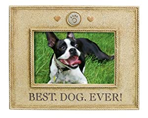 Grasslands Road Best Dog Ever Picture Frame, 4 by 6-Inch by amscan - Lawn & Garden