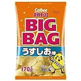 カルビー ポテトチップス BIGBAG うすしお味 170g×12袋