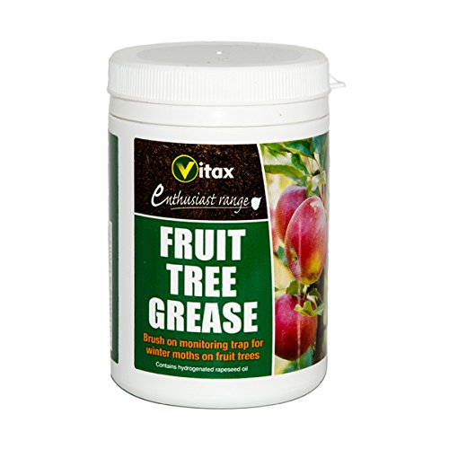 vitax-200g-fruit-tree-grease