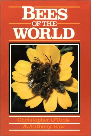 Bees of the World (Of the World Series)