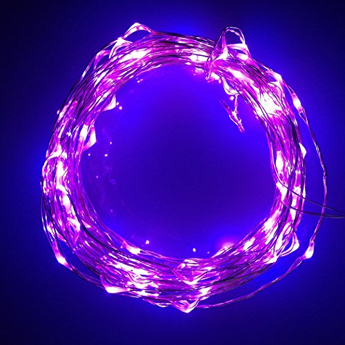 Newstyle 20Ft 6M Silver Led Lights Strings 120 Leds On Silver Wire 20Feet Led Starry Light With 12V Power Adapter For Christmas Wedding Dances And Party (Purple)