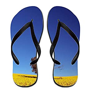brenree fall background men rubber 13 b m us flip flop sports outdoors. Black Bedroom Furniture Sets. Home Design Ideas