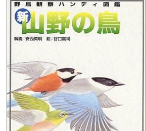 新・山野の鳥 (野鳥観察ハンディ図鑑)