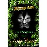 Django Zoon. The Straightener. Book 1 (The Straightener book 1)