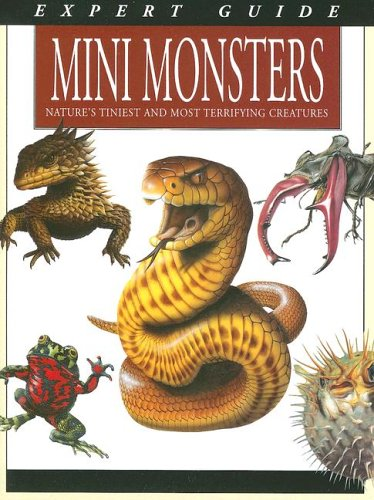 Expert Guide to Mini Monsters