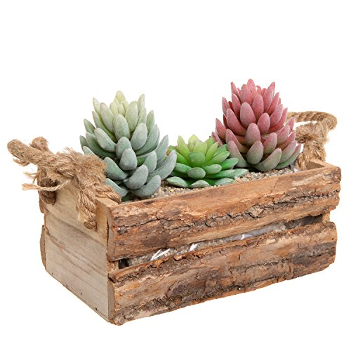 Country Rustic Natural Wood Plant Box Pot / Windowsill Flower Container / Small Decor Holder - MyGift®