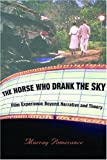 img - for The Horse Who Drank the Sky: Film Experience Beyond Narrative and Theory book / textbook / text book