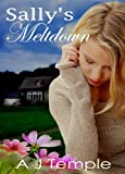 Sallys Meltdown (Contemporary Romance Series) Episode 11