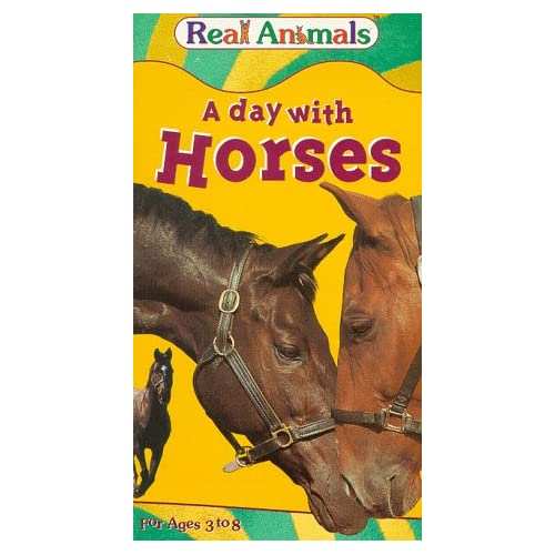Amazon.com: A Day with Horses [VHS]: Real Animals