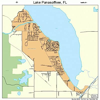 Lake Panasoffkee Fl Pictures Posters News And Videos