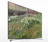 Samsung UE65F8000 165cm (65 Zoll) 3D LED-Backlight-Fernseher, EEK A+ (Full HD, 1000Hz CMR, DVB-T/C/S2, CI+, Smart TV, HbbTV, Sprachsteuerung) schwarz