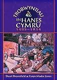 Trobwyntiau Yn Hanes Cymru (Welsh Edition)