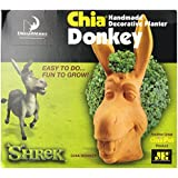 Chia Donkey Handmade Decorative Planter, 1 Kit (Discontinued by Manufacturer)
