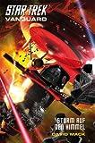 Star Trek - Vanguard 8: Sturm auf den Himmel