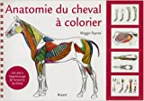 Anatomie du cheval  colorier : Une aide  l'apprentissage de l'anatomie du cheval