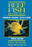 Reef Fish Identification - Travel Edition - Caribbean Bahamas South Florida