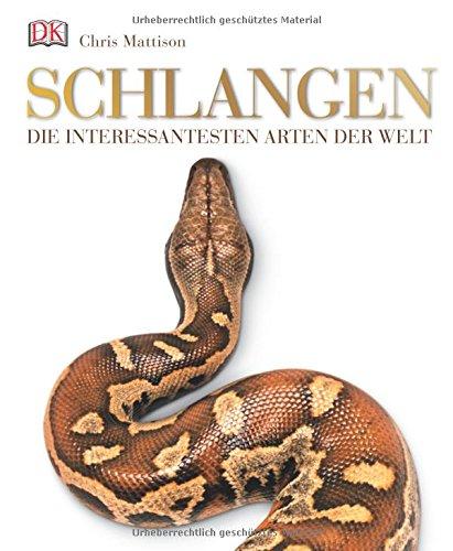schlangen-die-interessantesten-arten-der-welt