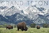 Grand Teton National Park, Wyoming - Buffalo and Mountain Scene (100% Cotton Kitchen Towel)