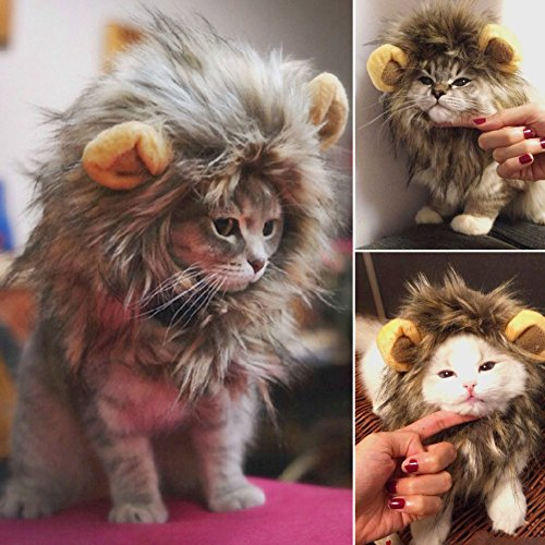 furry-pet-hat-costume-lion-mane-wig-for-cat-halloween-dress-up-with-ears