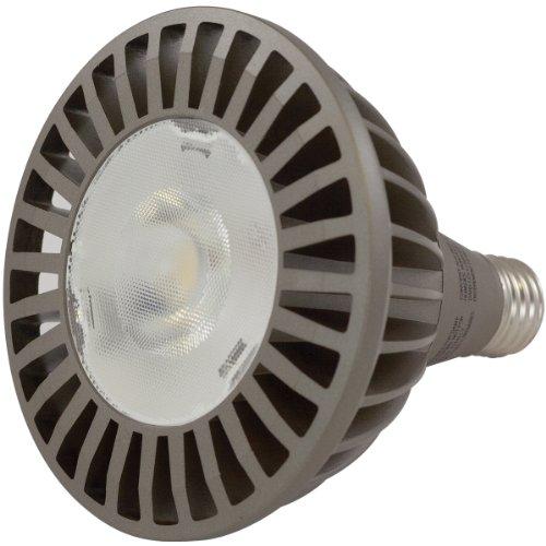 Liteline Lmp-Par38Led20W-4Ksp Par38 Medium Base Led Bulb, 120V, 20W, 4000K, Spot