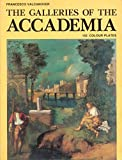 img - for The galleries of the Accademia book / textbook / text book