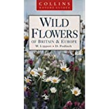 Collins Nature Guide - Wild Flowers of Britain and Europeby W. Lippert