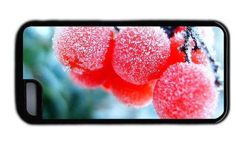 Hipster Iphone 5C Covers Funny Frozen Fruits Tpu Black For Apple Iphone 5C front-1032532