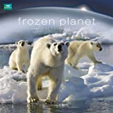 Danilo BBC EARTH - FROZEN PLANET 2014 CALENDAR (Calendars 2014)